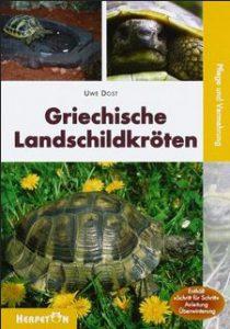 griechische Landschildkröten_U.Dost
